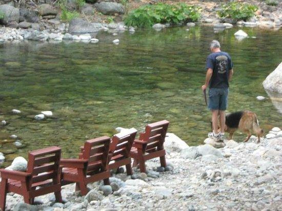 Herrington's Sierra Pines Resort: North Yuba River behind the property