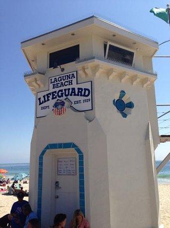Laguna Cliffs Marriott Resort & Spa: Main Beach