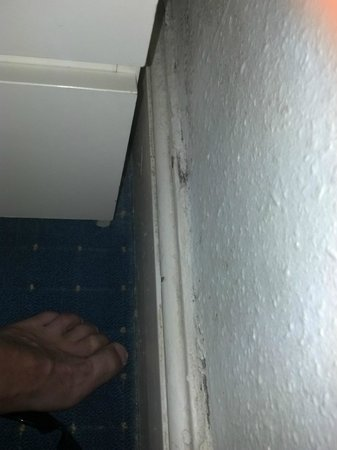 Anabelle's Guest House: Carpet/skirting