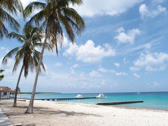 Hotel Maria La Gorda: white sand beach