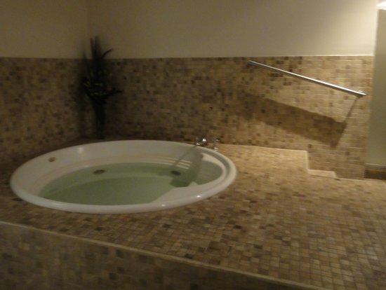 Melia Recoleta Plaza: jacuzzi in the spa