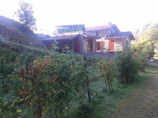Agriturismo Il Talento Nella Quiete : vue de l'arrière du jardin