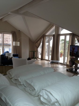 Le Coq Chantant Bed and Breakfast: Amazing B&B