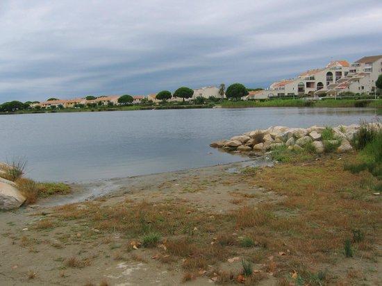 Le lac de salonique c t du camping picture of domaine for Lac salonique grau du roi
