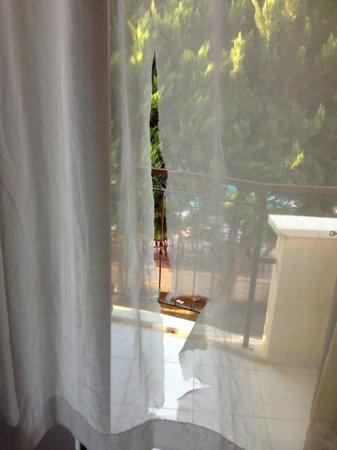 Prestige Residence Hotel : ayni perde