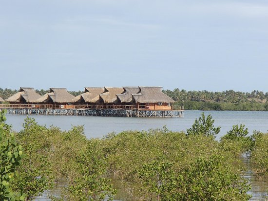 Flamingo Bay Water Lodge: over water