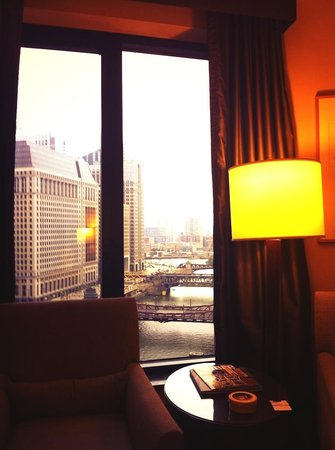 The Westin Chicago River North: View from a dream