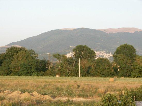 B&B Il Casale della Fornace : Panorama di Assisi