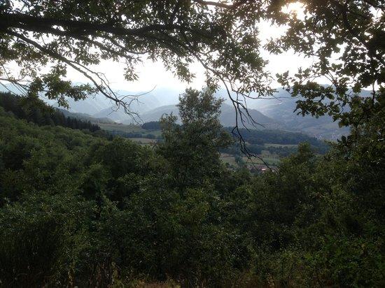 agriturismo valbonella panorama colline casentinesi