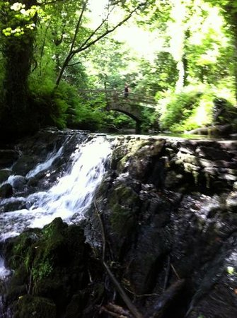 Kingscourt, Irlandia: Rabbitt Bridge, Dun a Ri Forest Park