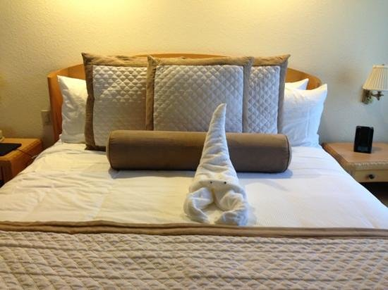 Coronado Beach Resort: they even offer an activity to learn the art of towel folding