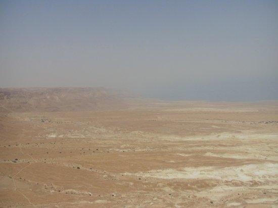 Knights Palace: Masada!