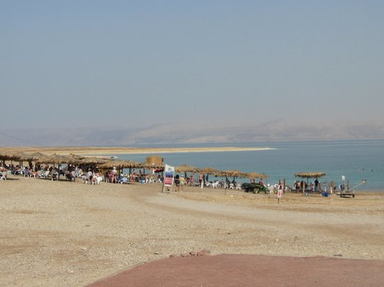 Knights Palace: The Dead Sea