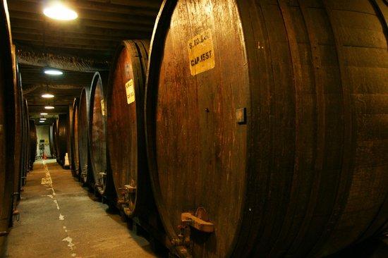 Korbel Entrance Picture Of Korbel Champagne Cellars