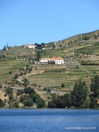 Quinta do Pego: Quinta desde Douro