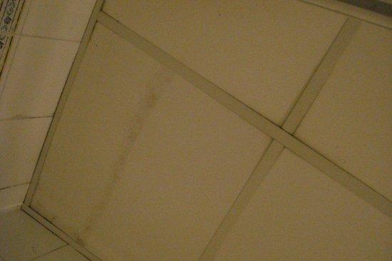 Windsor Hotel : Leak in the bathroom