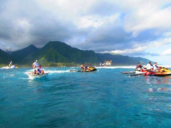 Image Result For Tahiti Tripadvisor Fresh E
