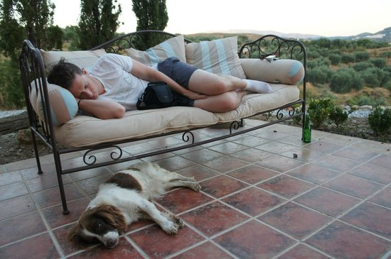 La Finca del Castillo Arabe: It's a hard life! Curled up on the couch after a walk with Missy!