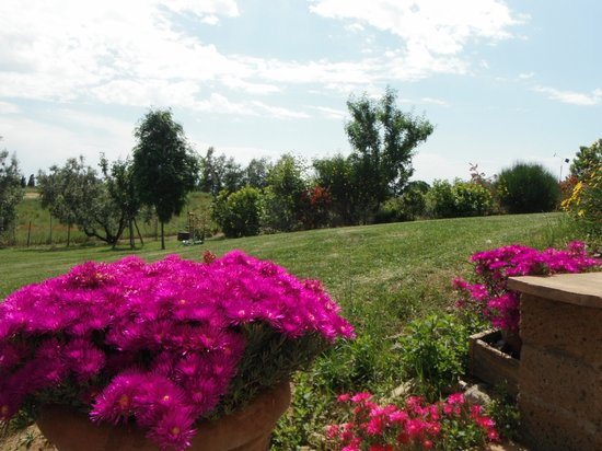 B&B Locanda degli Etruschi: Dettagli Giardino