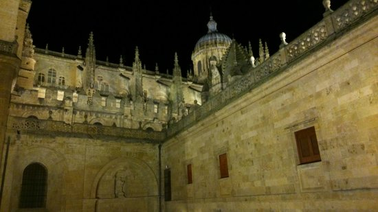 NH Salamanca Puerta de la Catedral : arrière de la cathédrale, vue depuis la terrasse