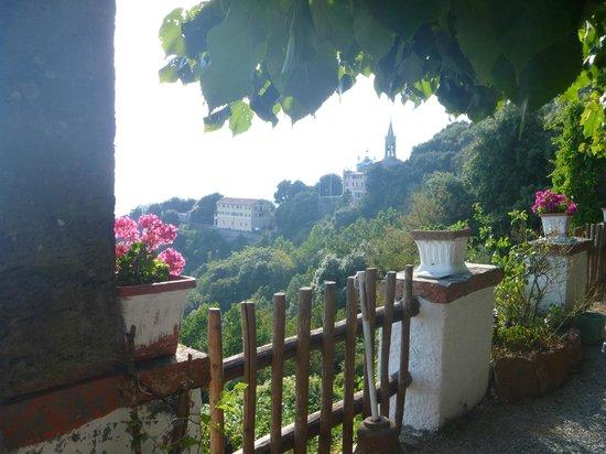写真Hotel Ristorante Montallegro枚
