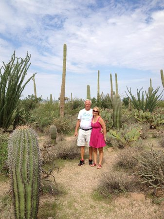 Red Hills Visitor Center: Saguaro with my Dad