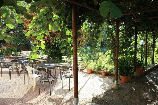 Hotel Gentile: the garden
