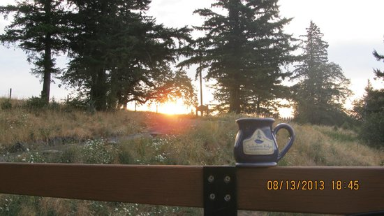 Chehalem Ridge Bed and Breakfast: Sunrise over coffee from the main deck
