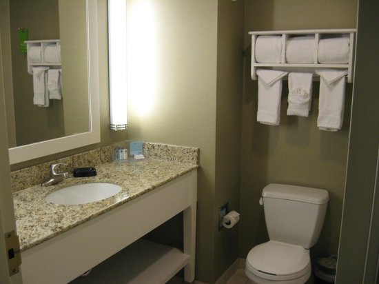 Hampton Inn & Suites Chicago - Downtown: Bathroom