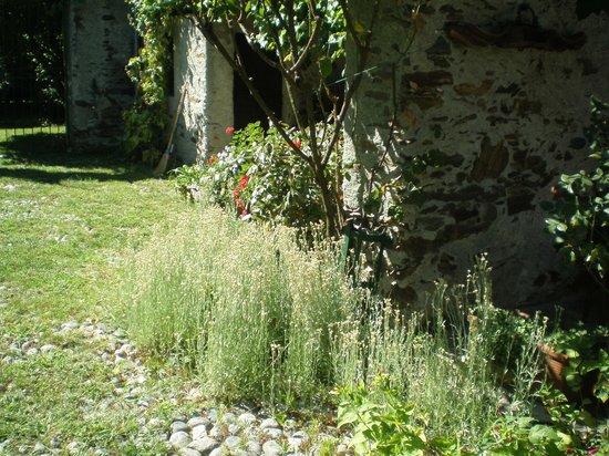 B&B L'Isola: giardino