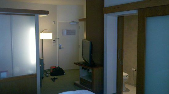 SpringHill Suites Cincinnati Airport South: View of the room