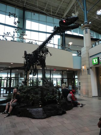 CF Chinook Centre : There's even a T-Rex in here!