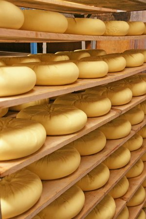 Vella Cheese Company: Shelved cheeses
