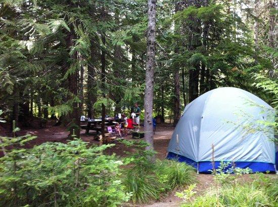 Trillium Lake: Camp Spot