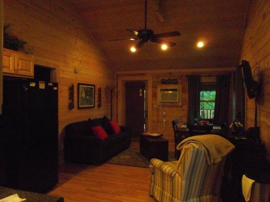 Little Valley Mountain Resort : Living Room