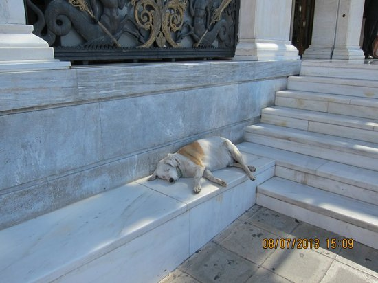 "Hotel Grande Bretagne, A Luxury Collection Hotel: ""Guard Dog"" Hotel doormen and valets are great!"