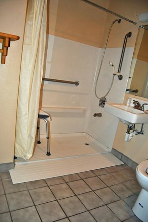 Econo Lodge Inn & Suites: Roll-In Shower