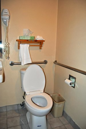 Econo Lodge Inn & Suites: Toilet