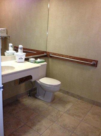 Days Inn & Suites Brandon: Bathroom