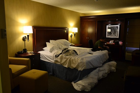 Hampton Inn Seattle Airport: the very large, comfortable room
