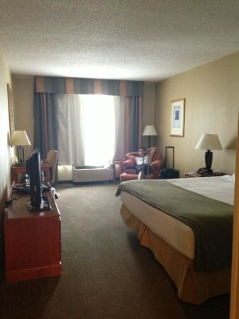 Holiday Inn Express Hotel & Suites New Tampa I-75 Bruce B. Downs : king room, very spacious