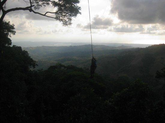 Osa Canopy Tour: Enjoying the Tarzan Swing!