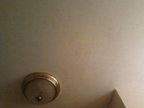 Badlands Motel: Peeling ceiling