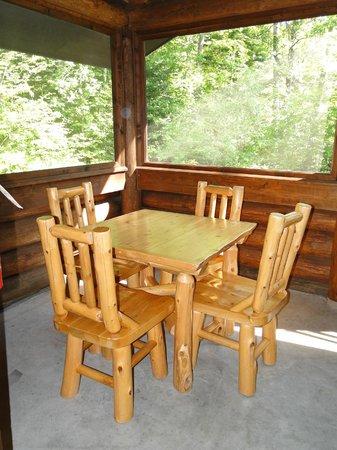 Douglas Lodge: Itasca Suites screened porch