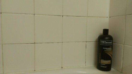 Extended Stay America - Los Angeles - Monrovia: mold in grout