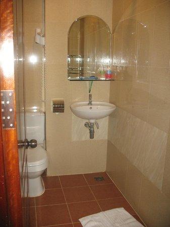 MotherHome Inn : Small but clean bathroom