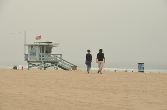 A Day in LA Tours : A Morning at Venice Beach
