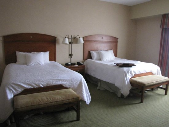 Hampton Inn & Suites Pittsburgh - Downtown: Twin queen beds