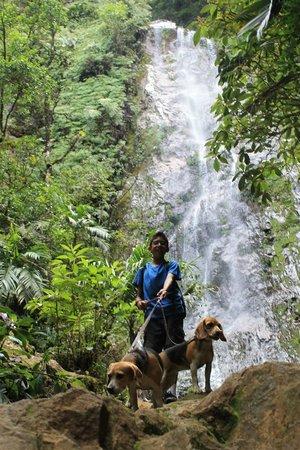 Parque Nacional La Tigra: Catarata
