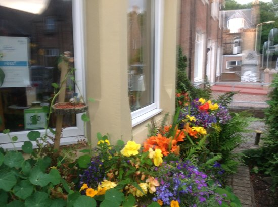Rose Lodge Guest House : Flowers at front of house at Rose Lodge